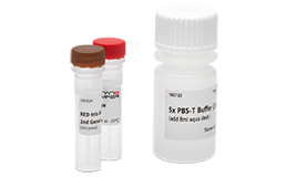 Protein Labeling Kits